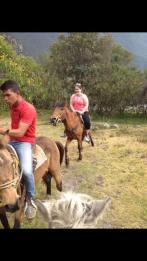 Awkward Horse Riding