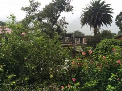 Casa Real View
